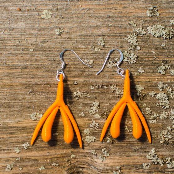 Klitta-Korvakorut Oranssi